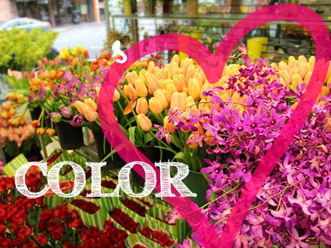 Color Love
