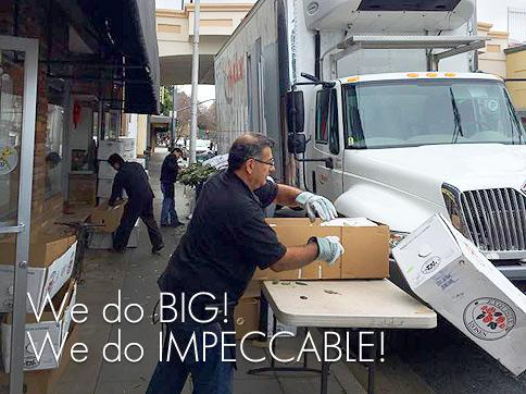 BIG--impedccable