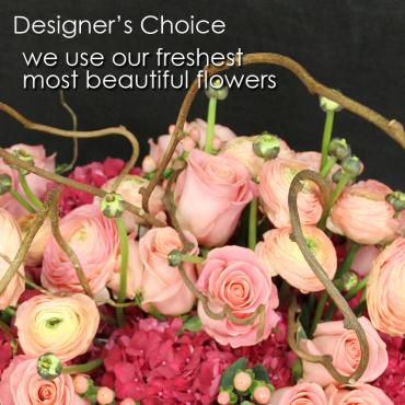 CP-Designer\'s Choice